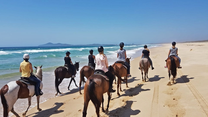 Horseabout Tours, Tuncurry beach horse riding