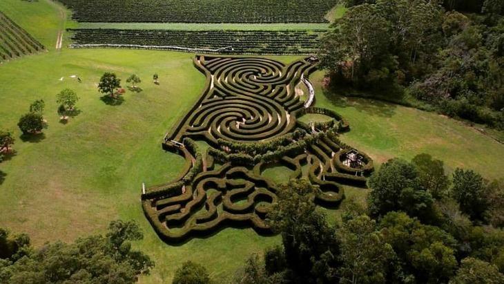 The Best Mazes Near Sydney Ellaslist