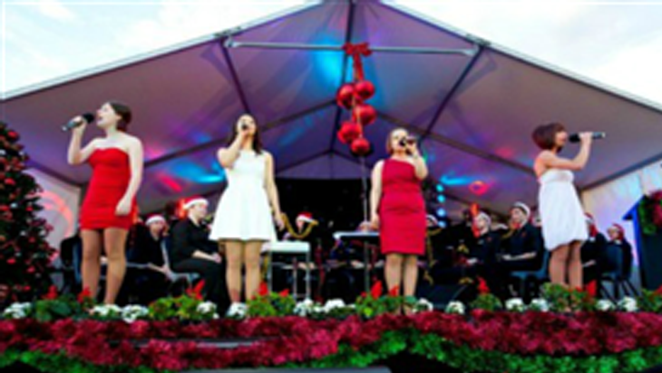 denis walter has organised carols by the bay for many years and also hosts and performs at the eventsing along to christmas hymns being performed by - Best Christmas Hymns