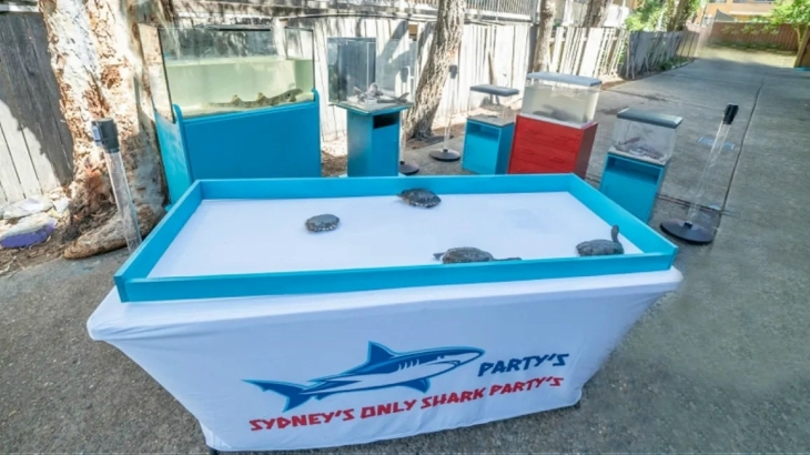 Shark Party's Mobile Petting Zoo