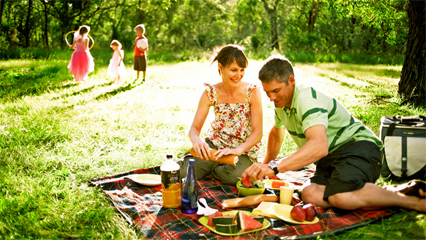 Boxing day picnics sydney