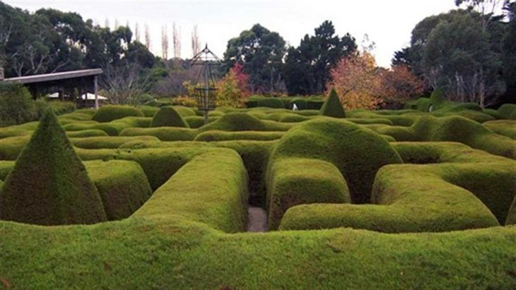 Mazes in and around melbourne 730 x 411