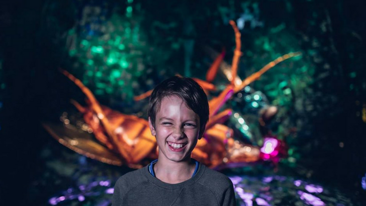 Bug themed activities for kids in melbourne