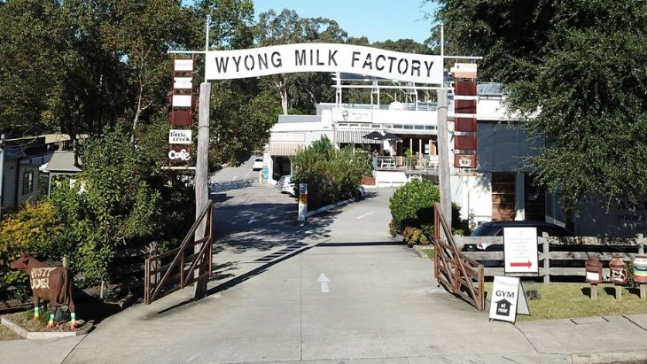 Wyong milk factory hero