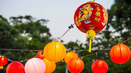 The hills shire lunar new year 2015