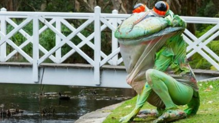 The great big story book centennial parklands kids shows sydney kids easter school holidays frog easter