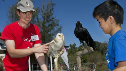 Birdlife discovery centre sydney olympic park sydney kids north ryde bird watching