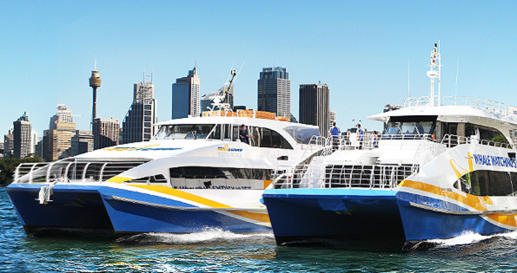 Sydney eco hopper manly fast ferry