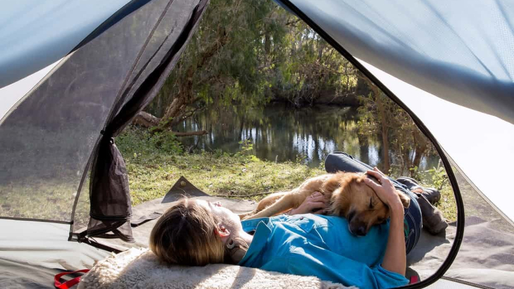 Pet friendly camping2 %281%29