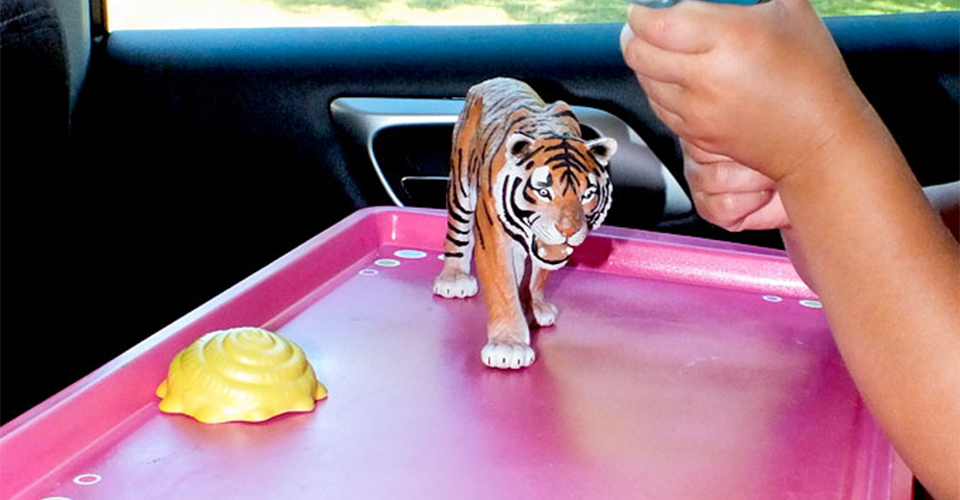 Baking Tray Road Trip With Kids Tip