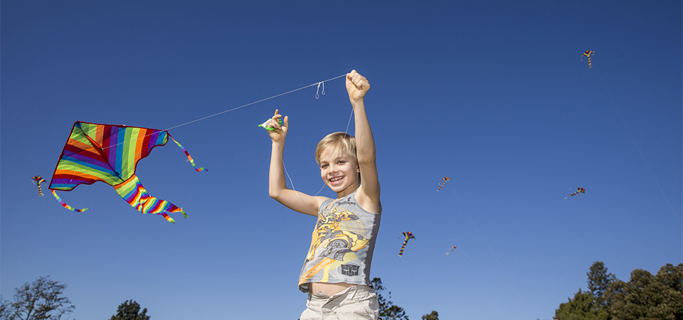 Kite Flying at Rouse Hill House & Farm