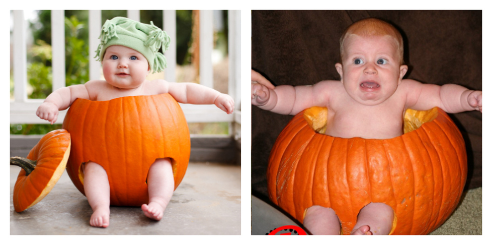 pf pumpkin