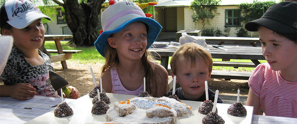 Celebrate A Kids' Birthday Party at Calmlsey Hill City Farm 960x400