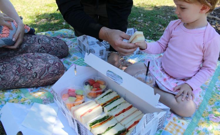 centennial homestead picnic