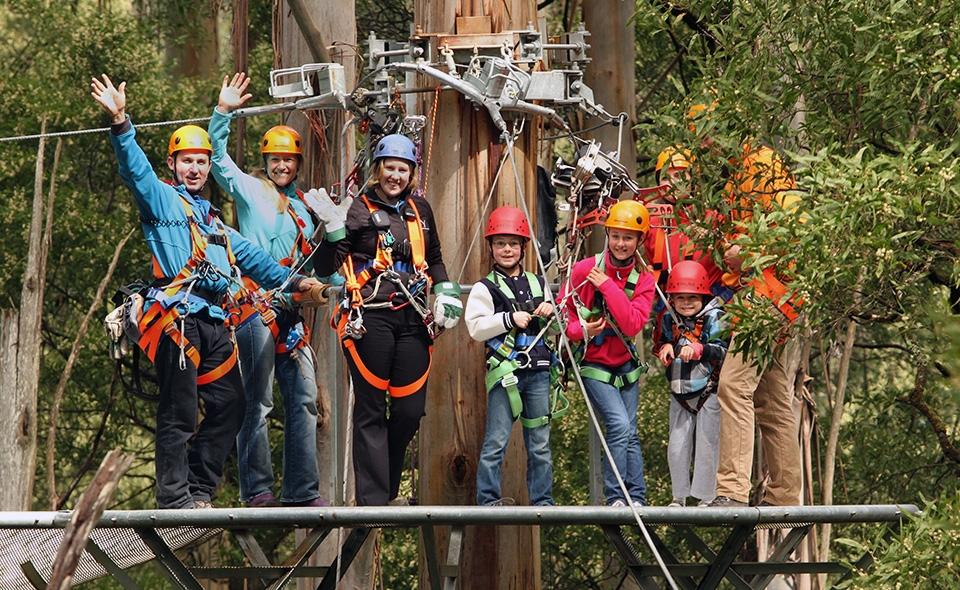 Illawarra Fly Treetop