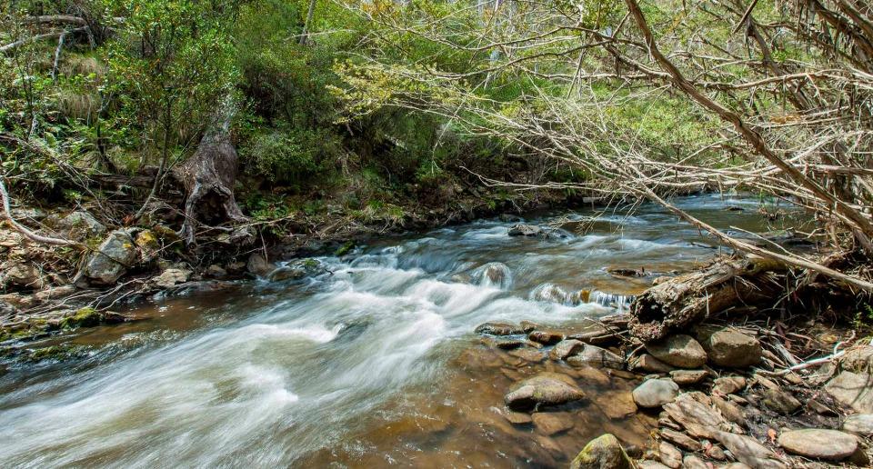 Buddong Falls campground, Kosciuszko National Park