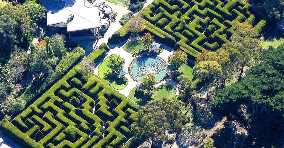 Ashcombe Maze and Lavender Garden